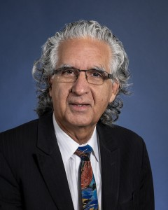Rajinder Pal Bhullar